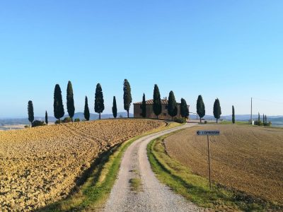 ORCIA 15