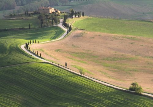 orcia 1